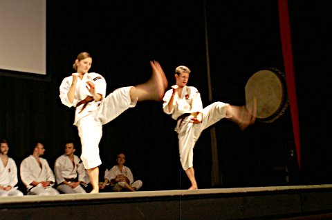 JapanFestival_012011_06