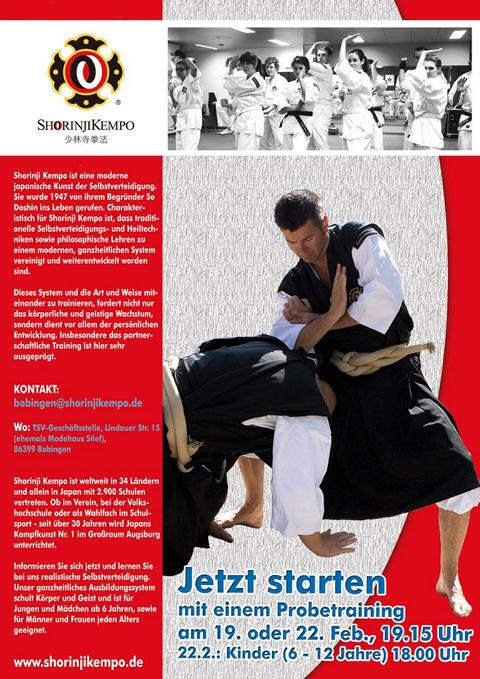 flyer-feb-2013-klein